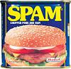 Click image for larger version  Name:spam.jpg Views:268 Size:10.5 KB ID:20945