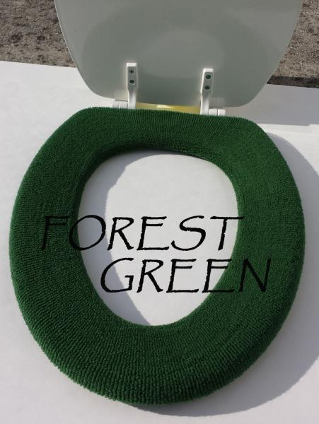 Click image for larger version  Name:green-grey-toilet.jpg Views:121 Size:37.6 KB ID:23697