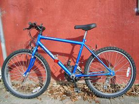 Click image for larger version  Name:bicicle.JPG Views:43 Size:62.5 KB ID:373